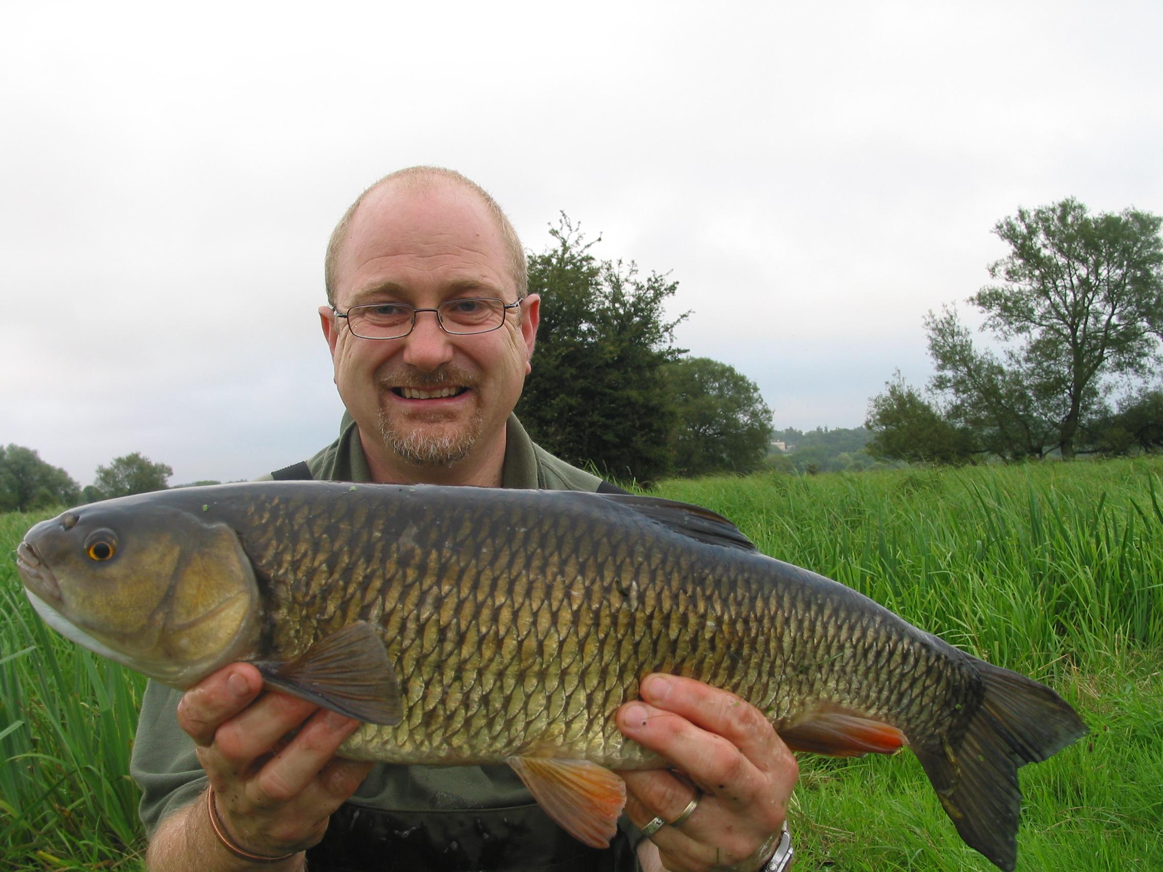 10 x Cage Fin Feeders 50 grams Carp // Coarse Coarse Carp rivers and Lakes