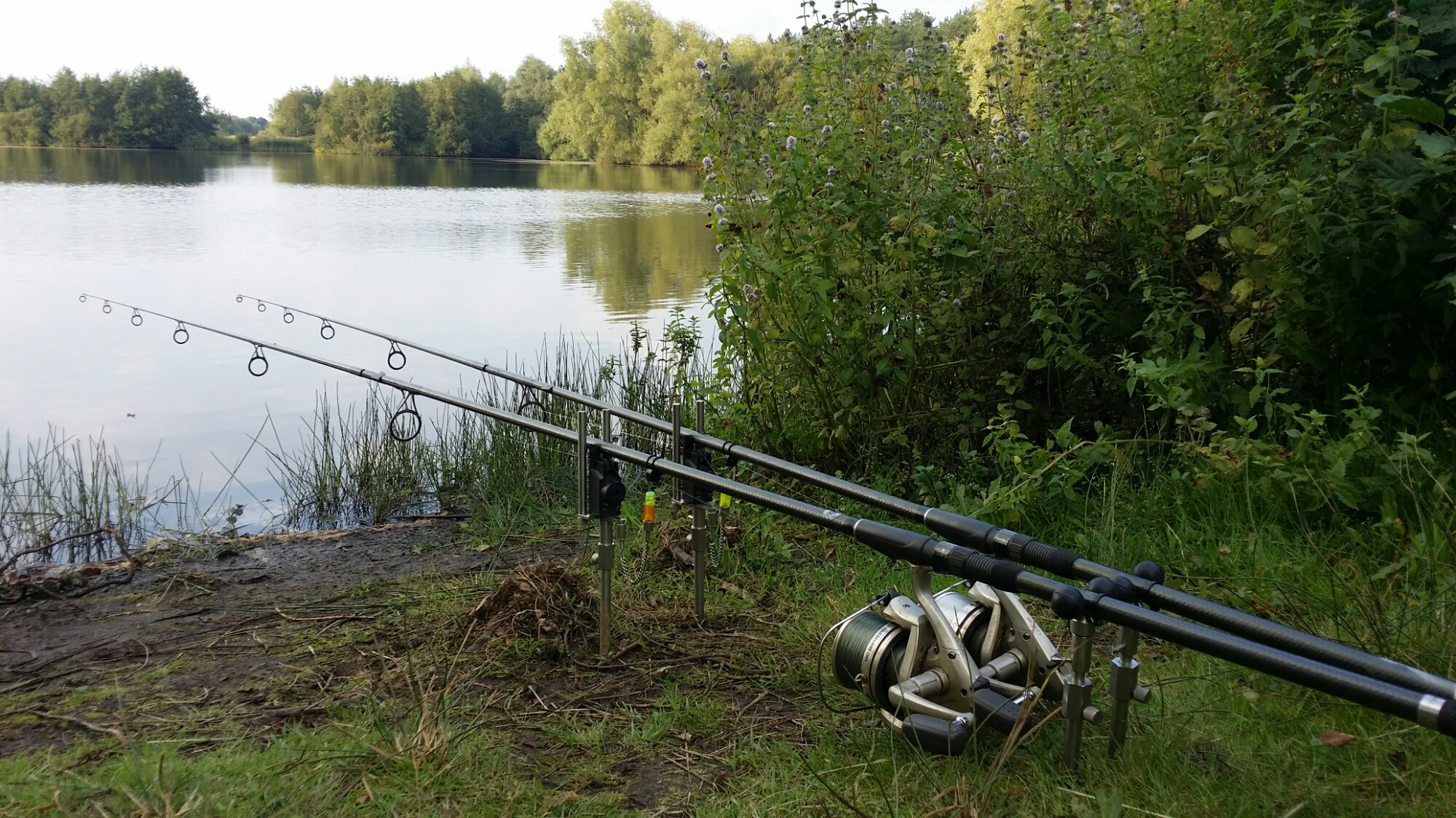 Trip no37 carp fishing 2014 uk carp coarse fishing - Carp fishing wallpaper hd ...