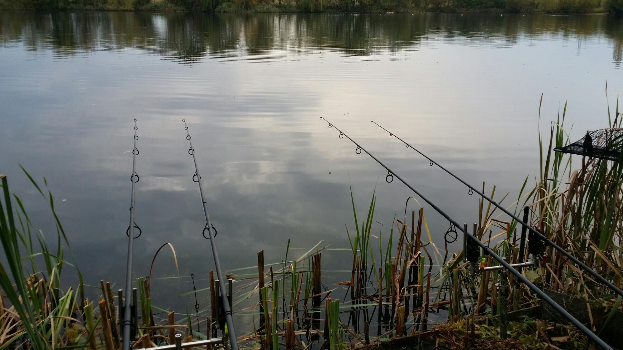Trip no43 carp fishing 2014 uk carp coarse fishing for Fishing lake near me