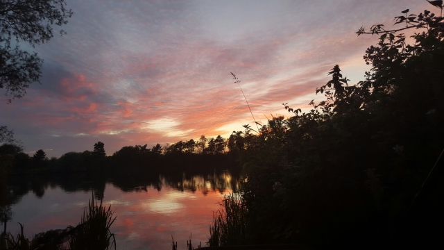 UK Carp & Coarse Fishing | Fishy Tales & Storys | Page 150