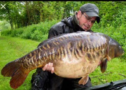 Famous Photographys | UK Carp & Coarse Fishing