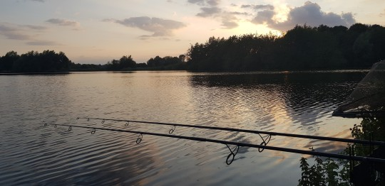 Carp Photos | Carp Fishing France at Lepinet South with Angling Lines