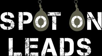 Spot-On-Leads-Logo-v1-Colour-standard