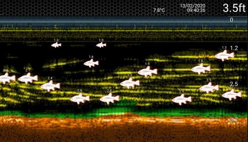 screenshot_20200213-103753_deeper
